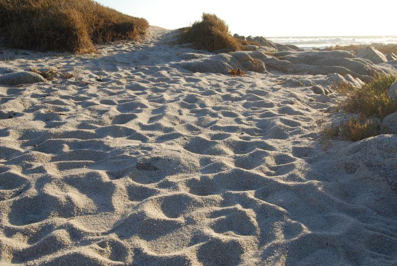 Monterey Peninsula 0027